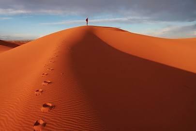 Lent: A journey into the 'desert' – Paulist Fathers